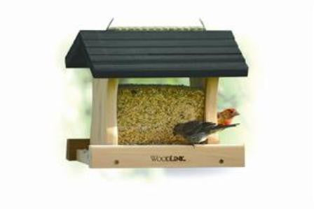 Small Green Roof Feeder