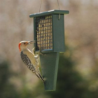 Recycled Suet w Tail Prop