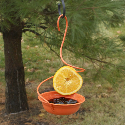 Orange Mealworm & Oriole Feeder