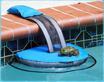 Frog Log Pool Safety for Animals