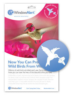 Window Alert Decal -Hummingbird