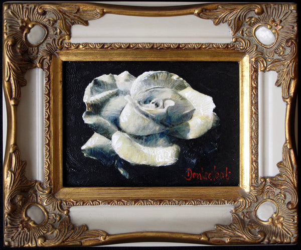 White rose in white frame