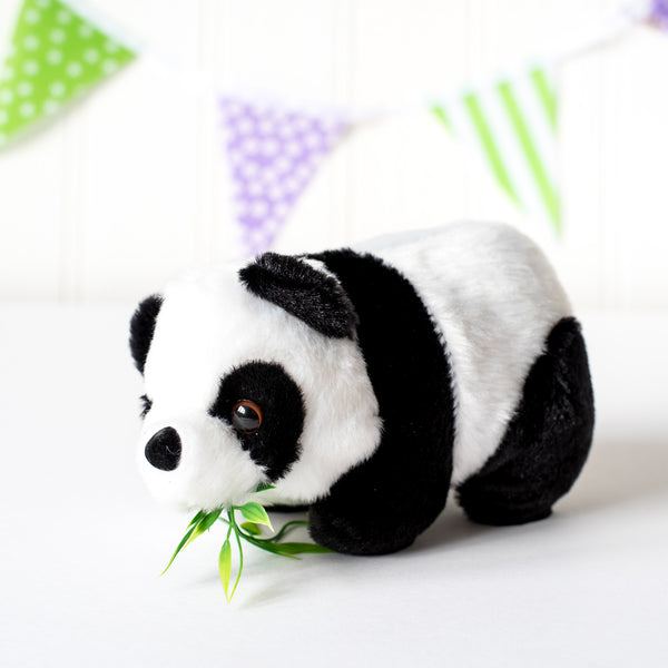 China Country Pack with Cuddly Panda Toy