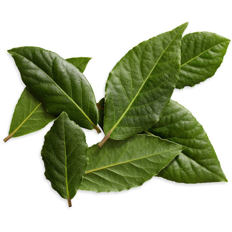 Bay Leaves - (20g)