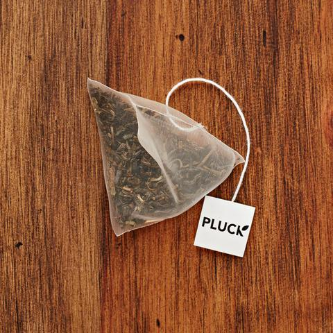Pluck - Canadian Maple (20 bags)