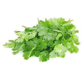 Cilantro - (1 Bunch)