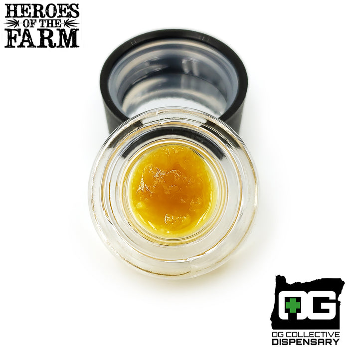3 KINGS SUGAR WAX from OG PROCESSING [MO]