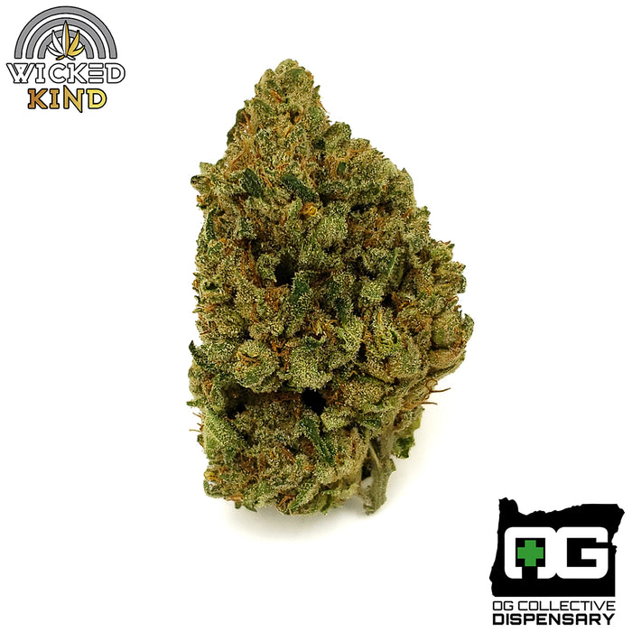 Sneeze from Wicked King // Lineage: Colorado Cough x Ghost OG // Sativa-Dominant