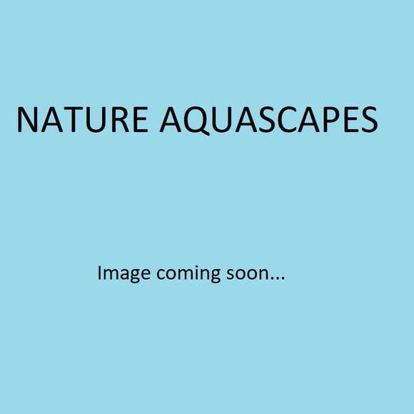 Nature Aquascapes Balance (All In One Liquid Fertilizer)