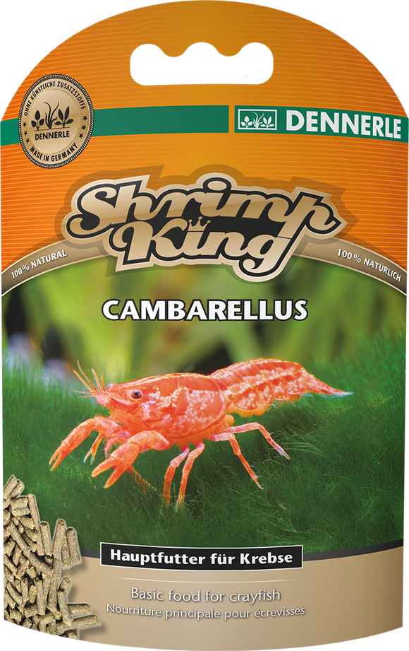 Shrimp King Cambarellus