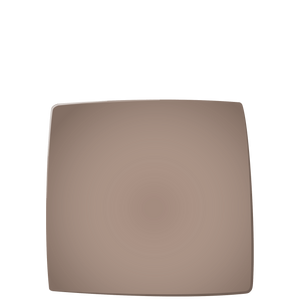 E01 EBI Square plate - Fig, in stock