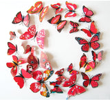 Butterfly Wall Stickers Red Circle