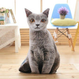 cat cushion russian blue