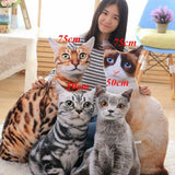 4 Simulation Stuffed Cat Toys with Woman