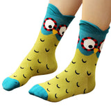Owl socks green and turquoise