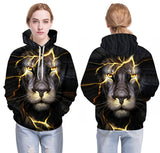 Lion Sweatshirt on boy front and back