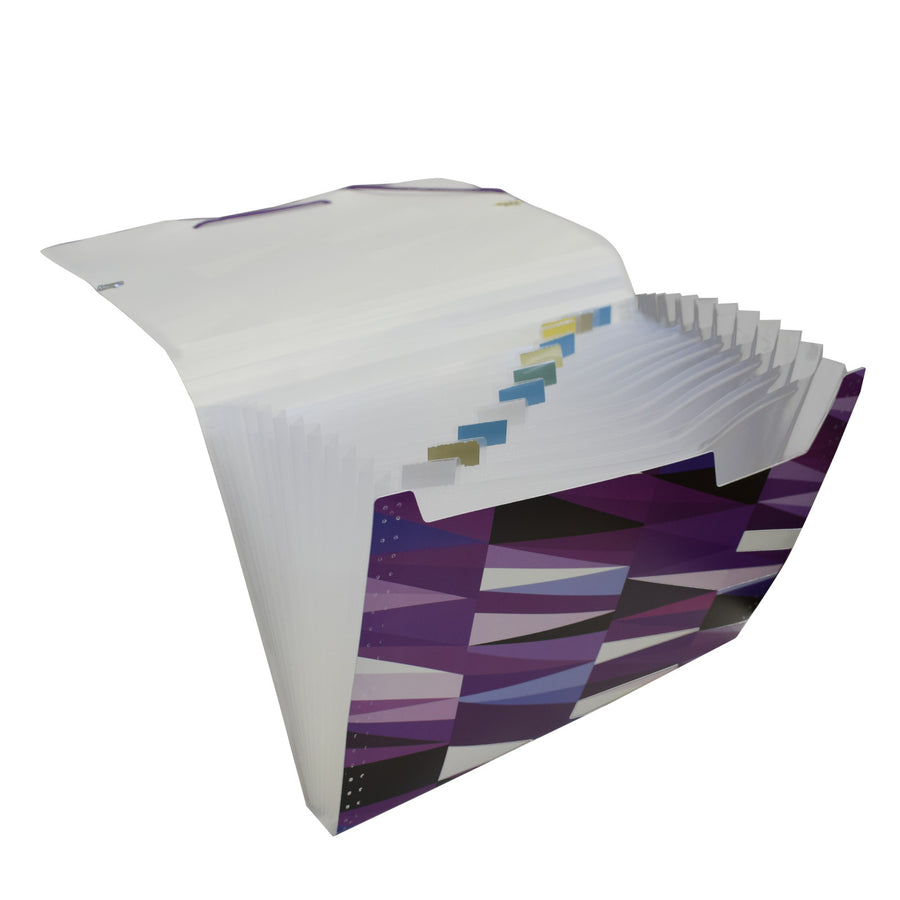 12 pocket accordion file folder of polypropylene