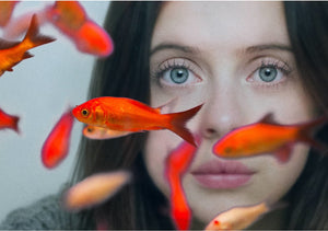 Heaven, Hollywood, or Hoboken: Caren Lissner's Carrie Pilby Hits Theaters in March