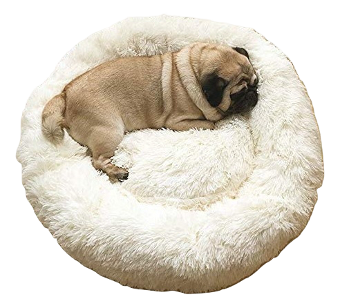Pug Crazy Calming Dog Bed