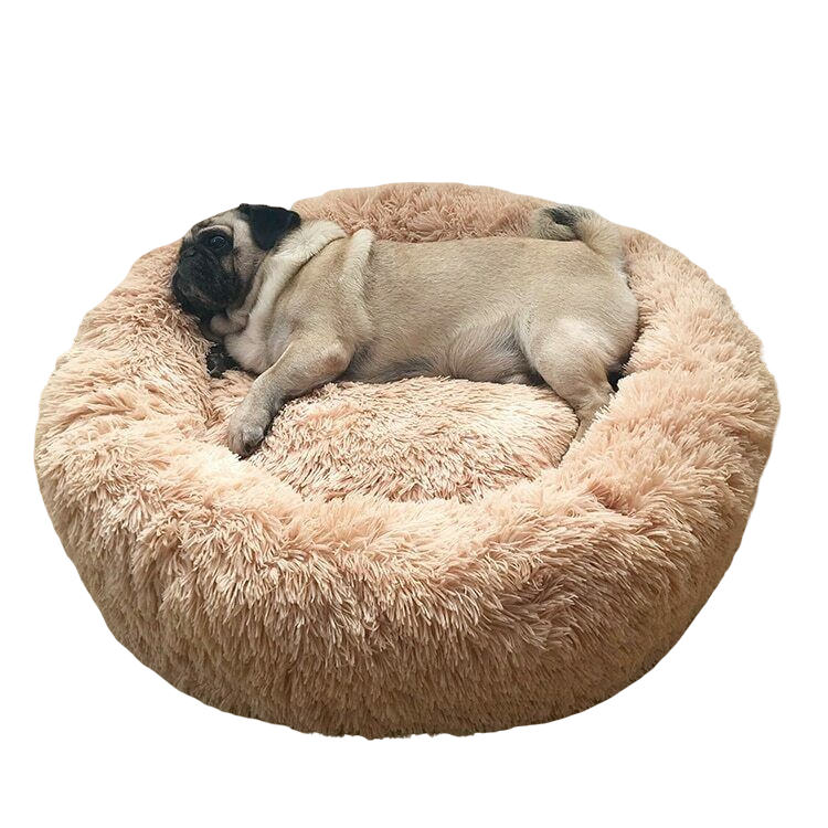 Pug Crazy™ Calming Dog Bed