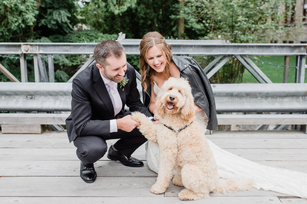 A newlywed couple poses with their dog who was one of the brides bridesmaids.