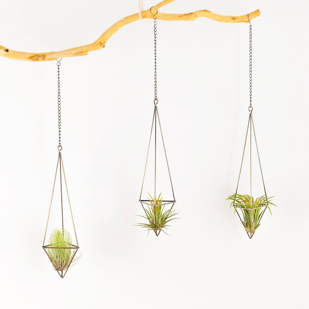 Hanging Air Plant Holders - Boutique Vintage One of a Kind. Free Tracked Shipping