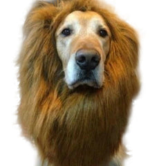 Lion's Mane Dog Costume For Large Dogs