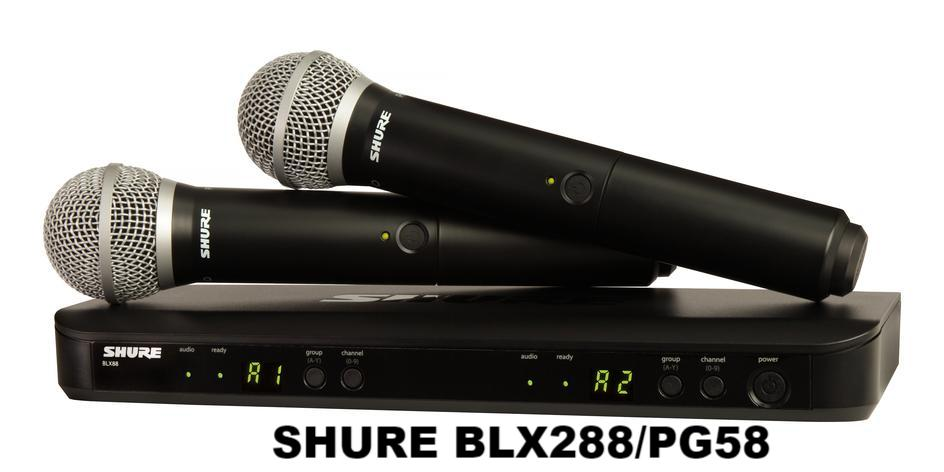 The Pro Elite #2: Combination of BLX288/PG58, PMA320III, CS-812 G3, and HD-888 5TB