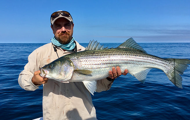Cpt Patrick Striped Bass