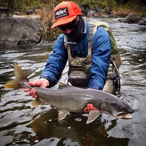 Lake Trout on Fly