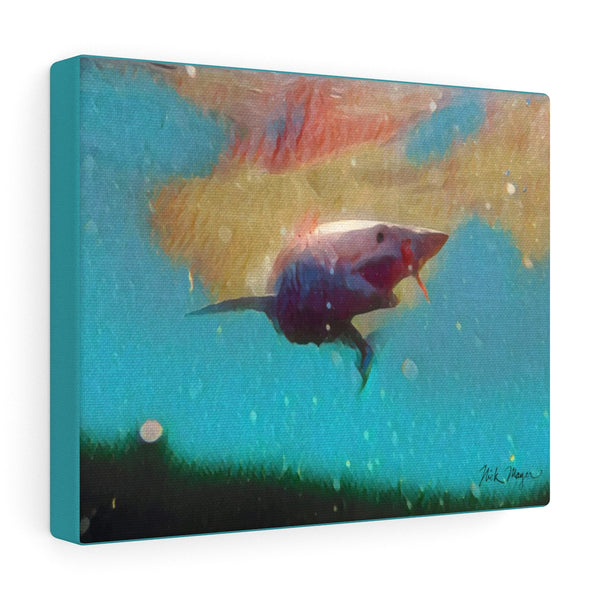 Mako Shark, Canvas Gallery Wrap, Turquoise