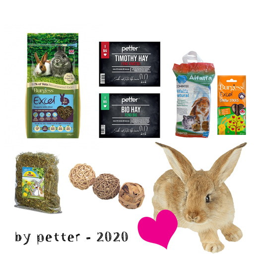 kit starter coelho bebé (eat healthy + fun) - PETTER