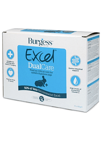 Burgess excel dual care - PETTER