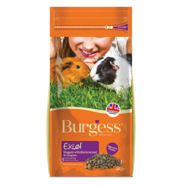 BURGESS EXCEL ADULT GUINEA PIGS BLACKCURRANT AND OREGANO 2 Kg - PETTER