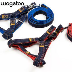 Denim halter-style adjustable harness and leash for dogs and puppies