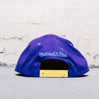 Mitchell & Ness Native Stripe (Lakers)