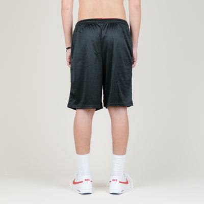 Carrots Logo Mesh Shorts (Black)