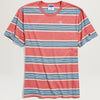 Champion Yarn Dye Stripe Tee (Pink)