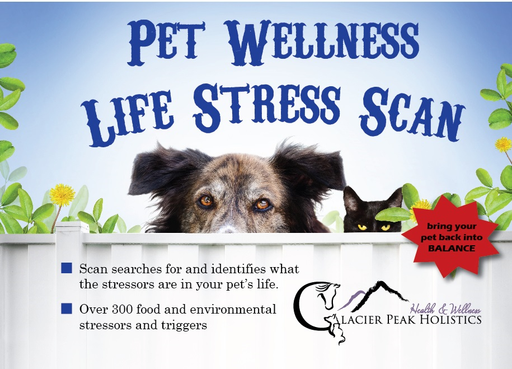 GPH Pet Wellness Life Stress Scan