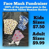 Human Child Face Mask WVHS Donation