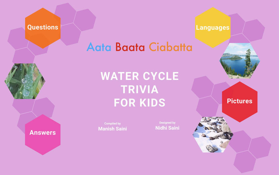 eBook: Water Cycle Trivia for Kids