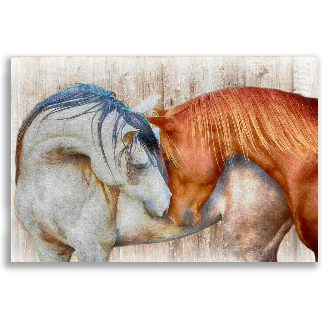 "Horse Canvas Wall Art ""Love Completely"" - Stretched on Wood Frame, Ready To Hang!"