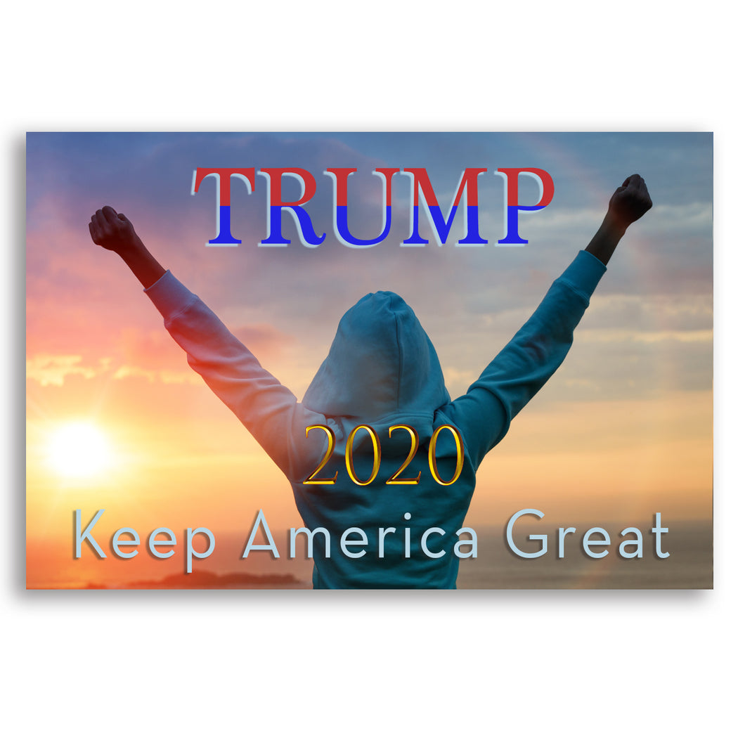 Trump 2020 Poster or Canvas Print - Celebrate