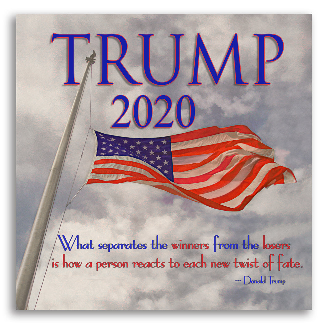 Trump 2020 Poster or Canvas Print - Flag Waving