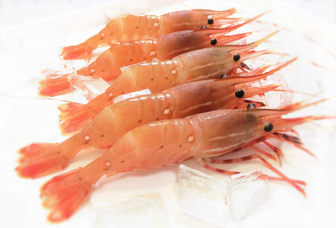 Spot Prawn Season - May 9th