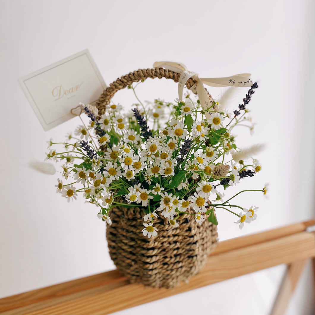 Flower Basket with Fresh Daisies - First Sight SG Best Florist