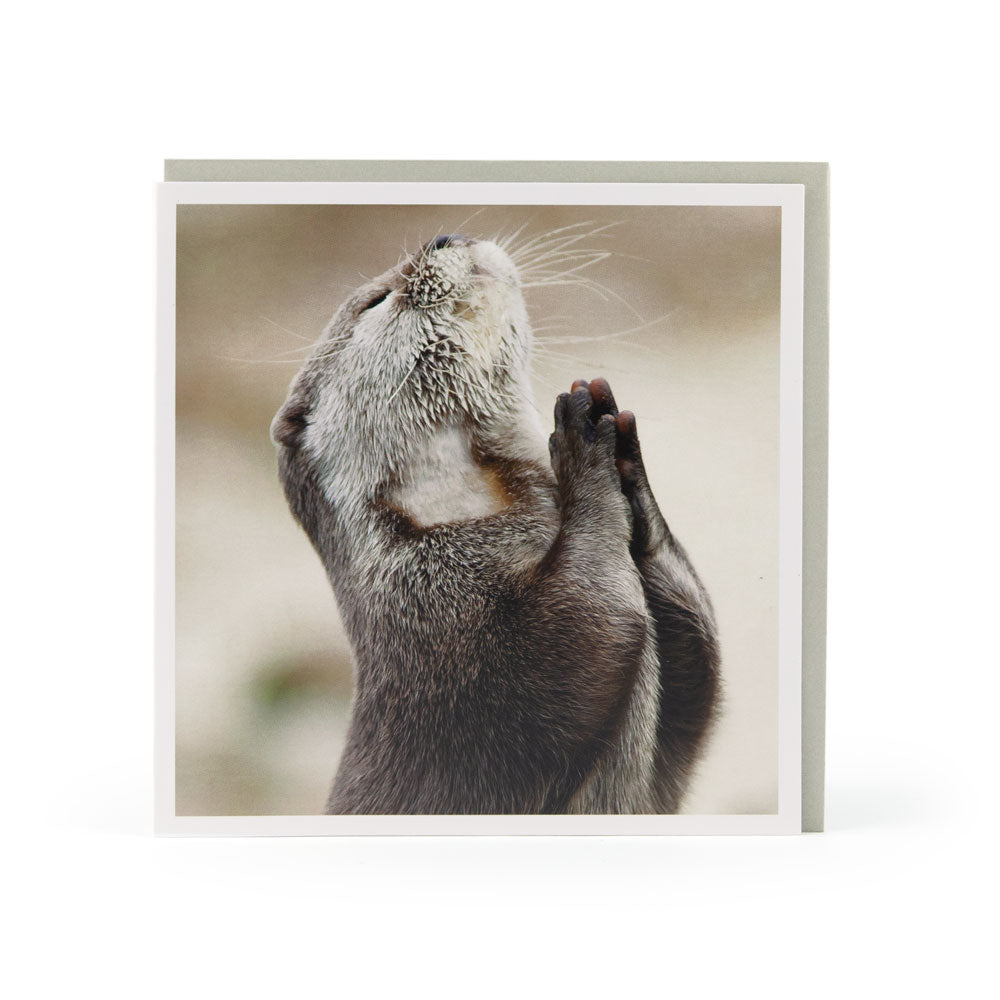 PRAYING OTTER CARD