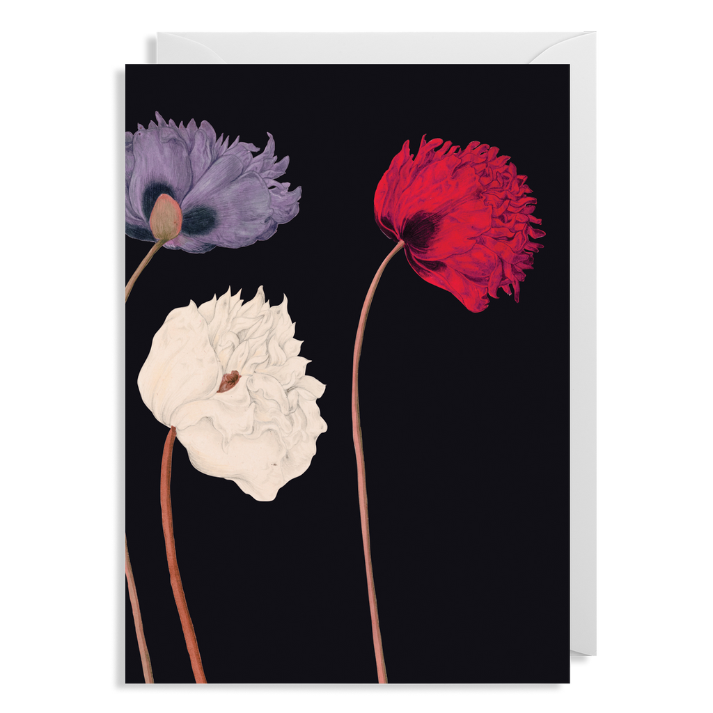 KEW POPPY CARD