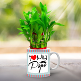 Buy & Send Lucky Bamboo Plant For Papa online with Zestpics. Order Personalized Lucky Bamboo for Father with free shipping in India.