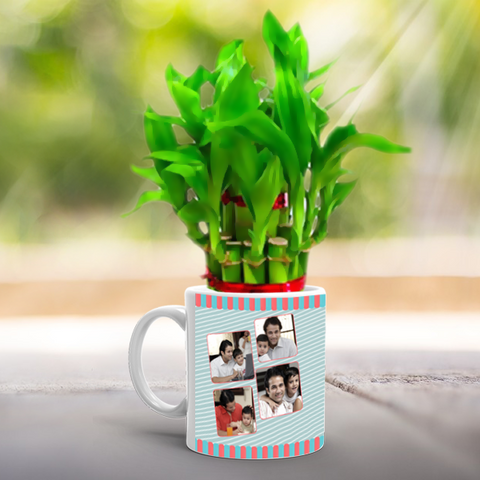 Lucky Bamboo Plant with Papa Mug | Gift Personalized Lucky Bamboo for Father